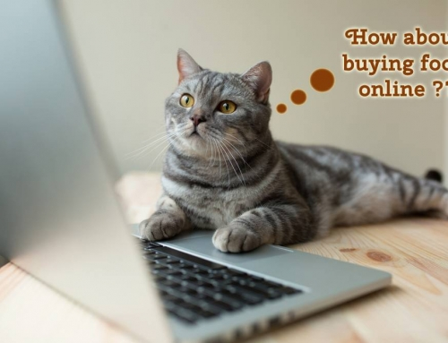 Pros and Cons of Buying Online