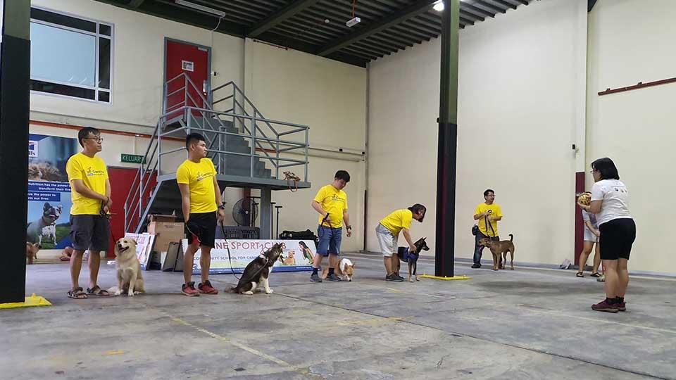 Canine SportzClub
