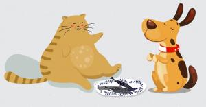 Obesity in Pets